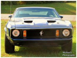 A  Mach 1 Mustang by TheMan268