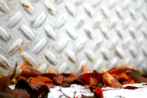 Fall'n Snow by rayne-storme