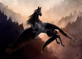 Black pegasus by Son-of-the-angels