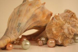 Pearls and Shells II by alunajoy