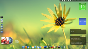 Elementary Desktop 15-01-2011 by cocooh