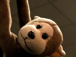 My Monkey by MikePetrucci