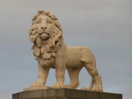 Coade Stone Lion by rlkitterman