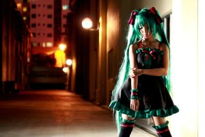 Hatsune Miku -PWB- by Bakasteam