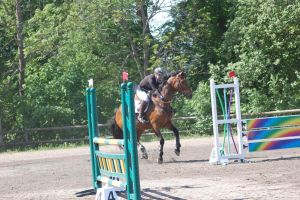 Showjumping by AskebodaStock
