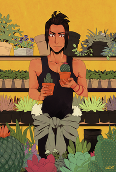 succulents by superbinksy