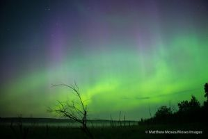 Aurora 07/14/12 by MosesImages