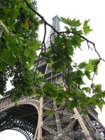 Eiffel Tower by hands-clean