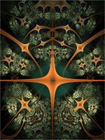 Colour works by FractalDesire