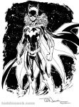 New 52 Batgirl inks by ToddNauck