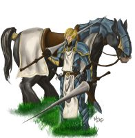 Francois the paladin by hawthornearts