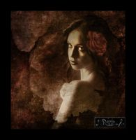 Rose ( a litle Abstract) by FrinaArt