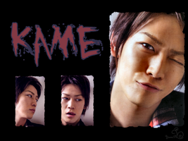 Kame - Wallpaper 1 by YumiPi