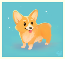 Corgi by Hollulu