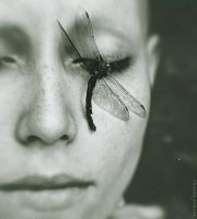 A Dragonfly's Death by NataliaDrepina