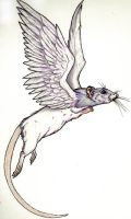 Ratwings, flying rat by GrimVixen