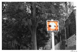 Unusual Road Sign.. by Arin91