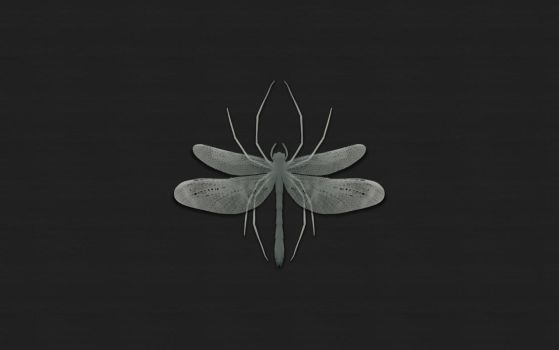 Spiderfly Wallpaper by kahil