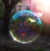 The bubble by Saadenika