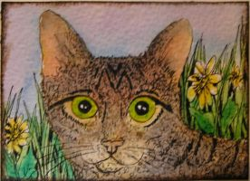 my mate neville by inkcat
