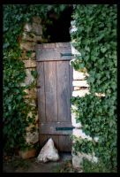 Garden Door by ChristinaH292