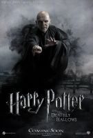 Fan Poster Voldemort HP7 by derekpotter