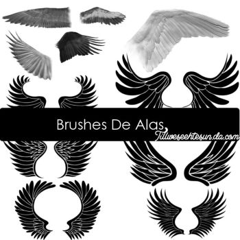 Brushes De Alas by tillweseethesun