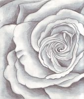 A Rose By Any Other Name by jenity
