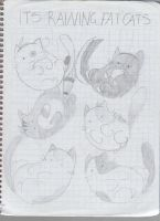 It'sraining fat cats by dianakudai27