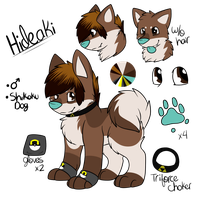 Hideaki Reference Sheet by CollectionOfWhiskers