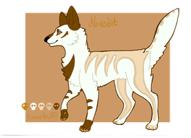 Navodit Reference Sheet by Kama-ItaeteXIII