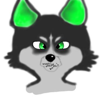 Toxic's Markings, Eyes, and Ears by ToxicFoxxeh