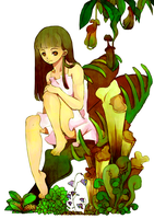 Carnivorous plants by arihato