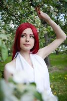 Erza Scarlet Fairy Tail by mchechenev