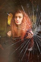 Broken Glass by maiarcita