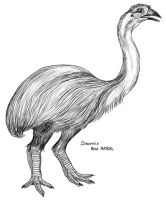 Dinornis, giant moa by PaleoAeolos