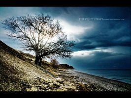 the Quiet Craze by proama