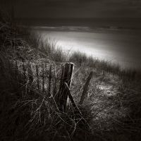 with a smell of sea II... by Kaarmen