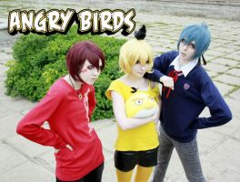 Angry Birds by Arichka