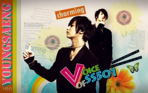 SS501 HEOYOUNGSEANG WALL by zareos