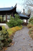Chinese garden Stock 16 by Malleni-Stock