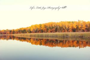 Autumn by LLJPhotography