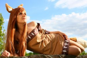 Horo cosplay (2) by mkuegler