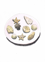 Christmas Cookies by egonSchiele