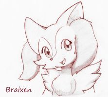 Braixen by asdfg21