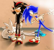 Sonic Team Photoshoot by Sept1st