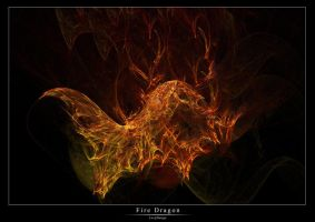 Fire Dragon by levydesign