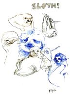 Sloths by YLimes