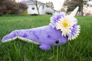 Bouquet Narwhal 2 by BeeZee-Art