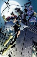 Bat Girl and Catwoman by assisleite